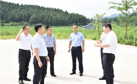 市委常委,组织部部长王海东到振安区调研